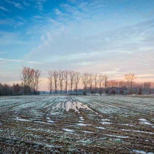 winter scene sunset